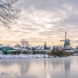 Meppel - molen de Weert in de winter