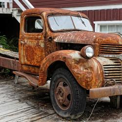 Dodge Rust