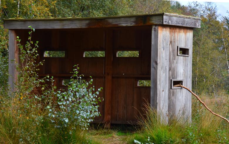 DSC_5239  Kijkhut. - Kijk hut bij het Molenven.<br /> <br /> in Saasveld.<br /> <br />
