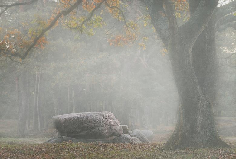 Hunebed in de Gasterse Duinen..