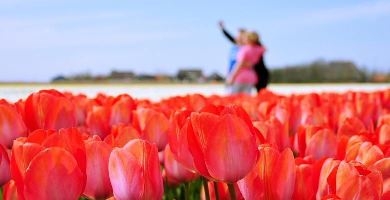 Weer een selfie. . .  - St. Maartensvlotbrug _ 10 x springen voor een foto... de tulpen zien ze niet...en dan snel de auto weer in.<br /> <br /> <br