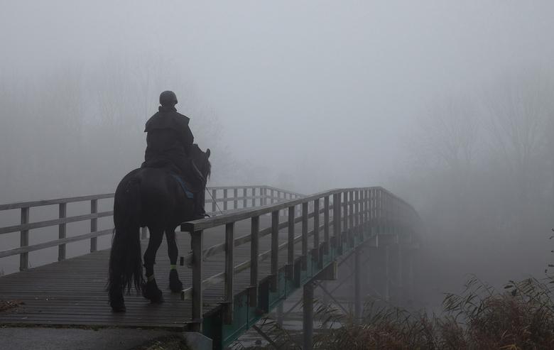 dikke mist - Afgelopen zondag een wandeling gemaakt met de mist in de Bernisse. Het leek wel alsof de mist steeds dikker werd. Onderweg kwam ik deze v