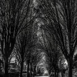 een gewone straat in Blaricum