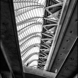 Calatrava Valencia 15