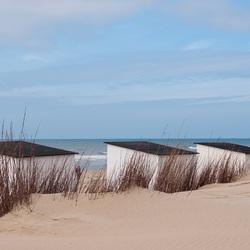 Strand van Texel