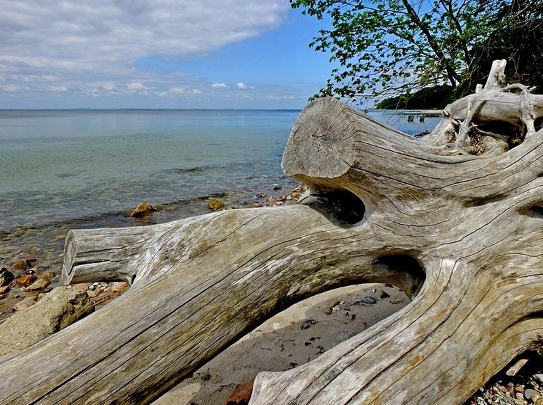 Water, hout en stenen