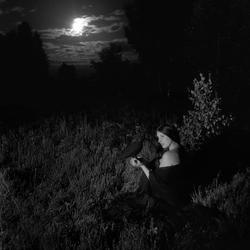 Op Een Nacht In De Heide