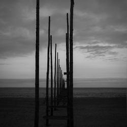 Palen op het strand bij Texel