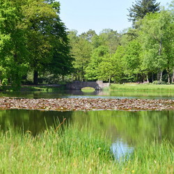 Nationaal Park de Hoge Veluwe