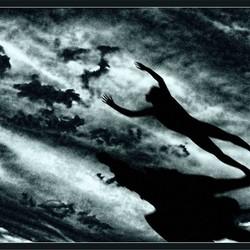 Pegasus & Bellerophon