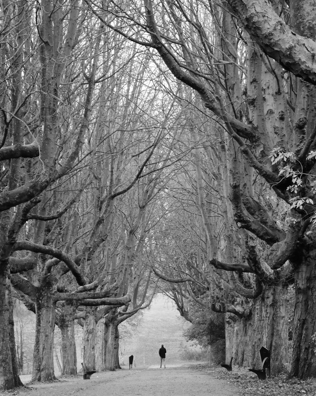 Grey World - Sometimes You can find the magic in a grey world.<br />