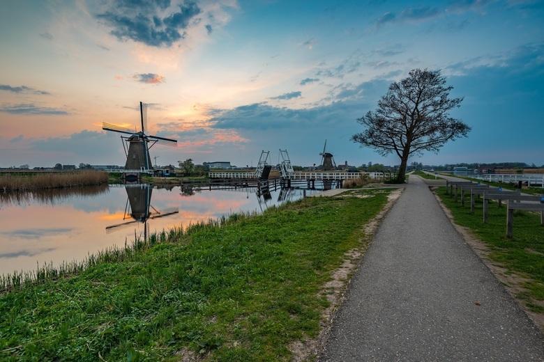 Kinderdijk (2) -