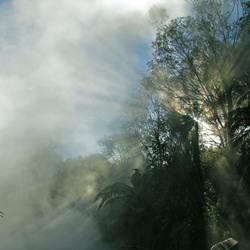 hot spring NZ