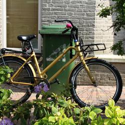 gouden fiets