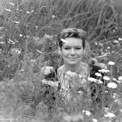 Petra in de veldbloemen