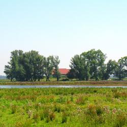 Boerderij in het groen