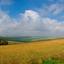 panorama golvend landschap