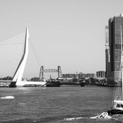 Rotterdam | Erasmusbrug