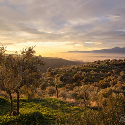 zonsopkomst in Sparta