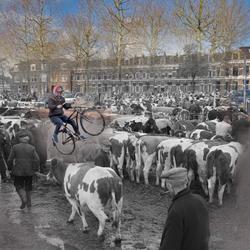 Beestenmarkt Deventer, onontdekt verleden