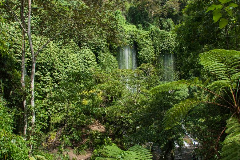 Tranen van de jungle - Waterval in de binnenlanden van Lombok