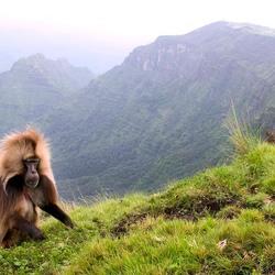 Ethiopië