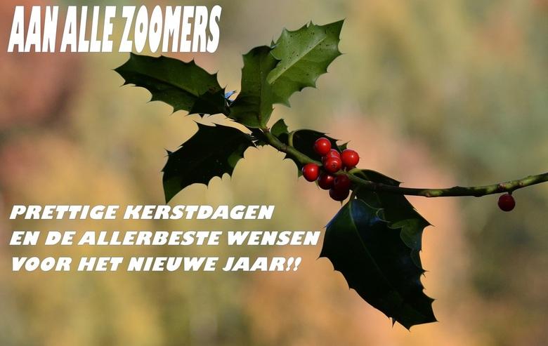 Aan alle Zoomers!! - Ik wens jullie allen heel fijne en gezellige Feestdagen en het allerbeste voor het Nieuwe Jaar. Dat al jullie wensen voor het Nie