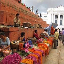 colorfull market