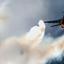 F16 power