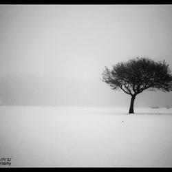 mist en sneeuw
