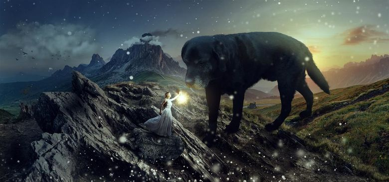 My dog Baloo meets his princess - I love photoediting. So I thought I make a wonderfull setting with my dog Baloo. He is a labrador and is a very swee