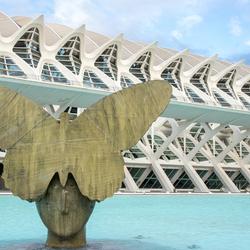Ruud Kuijer en Calatrava in Valencia