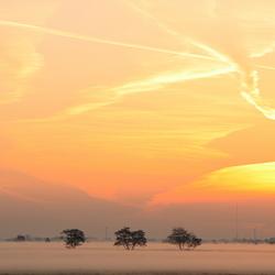 Sun Rising 3