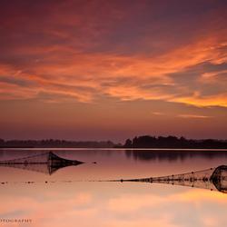 Visfuiken in het Lauwersmeer