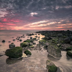Stenen op het wad