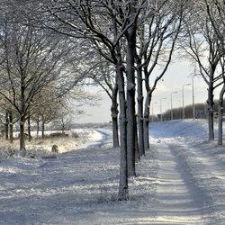 Winter langs de A12