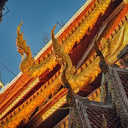 dakrand tempel 1701288648mnWik - kopie