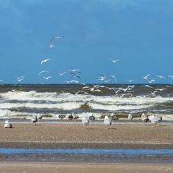 Strandzicht.jpg