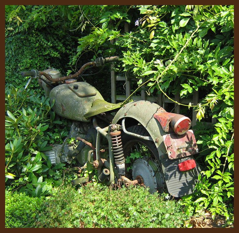een met de natuur 3 - Deze motorfiets staat er al een tijdje denk ik. Foto is gemaakt bij camping de Toerstop in Melderslo Limburg. <br /> Groetjes e