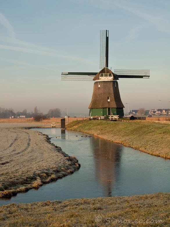 Typically Dutch - De voor de toeristen herplaatste molen aan de Zeddeweg bij Katwoude, niet ver van Volendam. In de zomer gekiekt door busladingen met
