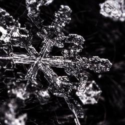 Sneeuwvlokje nummer 2