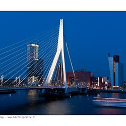 Rotterdam 33