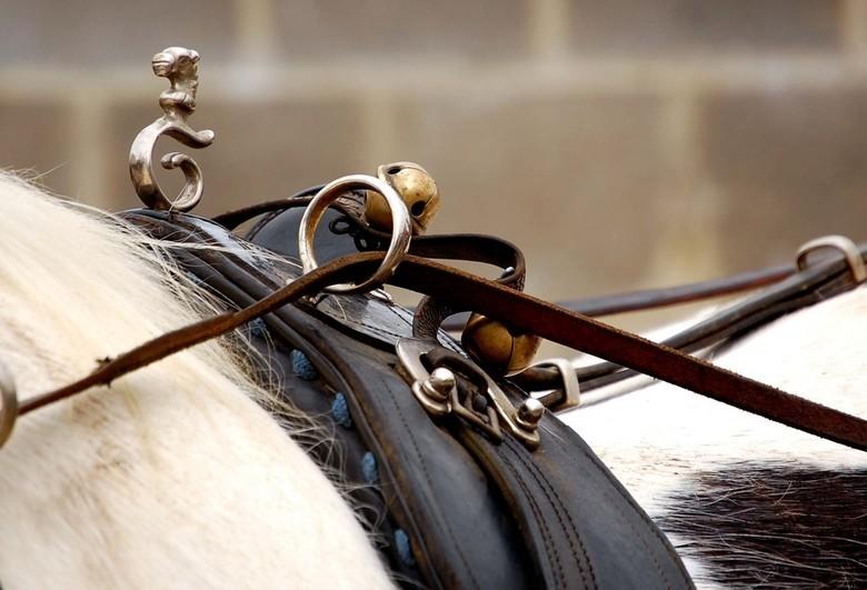 Ring Your Bell - Een detail van het tuig van een Tinker. Het tuig was versierd met vele belletjes, maar ik denk dat ik het zilveren paardenhoofdje nog