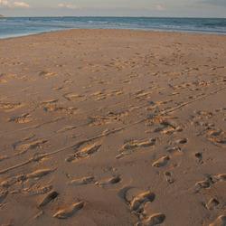 leeg strand.jpg