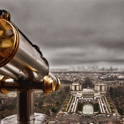 Paris Insight
