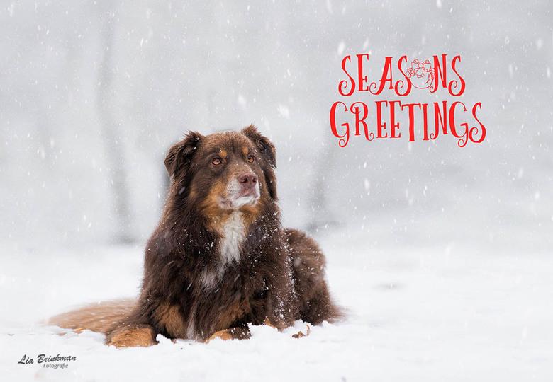 kerst 2018 - Hele fijne en gezellige feestdagen en een mooi fotogeniek nieuwjaar. Hoop dat jullie wensen uitkomen in het nieuwe jaar.<br /> <br /> H