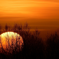 Zie de Zon schijnt............