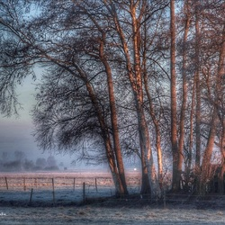 Een koude serene zonsopkomst