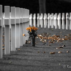 Amerikaanse oorlogsbegraafplaats Margraten (2)