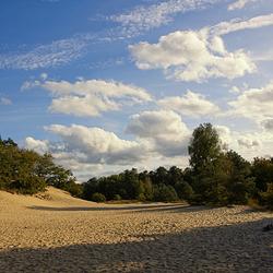 loon en drunense duinen 2